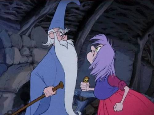 Wizard vs Sorcerer